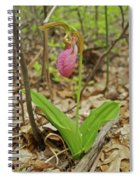 Lady Slipper 2037 Spiral Notebook