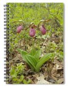 Lady Slipper 2059 Spiral Notebook