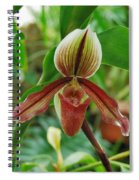 Lady Slipper Spiral Notebook