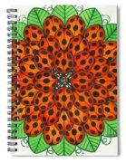 Ladybug Design Spiral Notebook