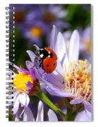 Ladybug Shows Her Heart Spiral Notebook