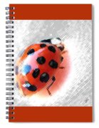 Ladybug Spectacular Spiral Notebook