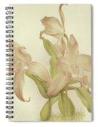 Laelia Autumnalis Venusta Spiral Notebook