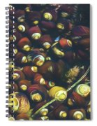 Laguna Beach Tide Pool Pattern 1 Spiral Notebook