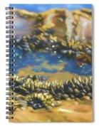 Laguna Beach Tide Pool Pattern 3 Spiral Notebook
