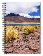 Laguna Miniques Spiral Notebook