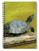 Laidback Turtle Spiral Notebook