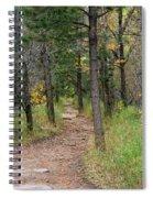 Lair O The Bear Spiral Notebook