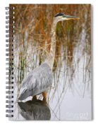 Lake Carmi Visitor Spiral Notebook
