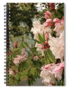 Lake Crescent Lodge Rhododendrons Spiral Notebook