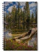 Lake Eleanor Spiral Notebook