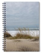 Lake Erie Sand Dunes Dry Grass And Ice Spiral Notebook