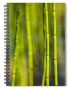 Lake Grass Spiral Notebook
