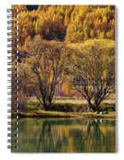 Lake In Autumn - 3 - French Alps Spiral Notebook