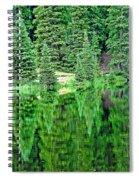 Lake Irene 12-1 Spiral Notebook