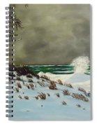 Lake Michigan In The Winter Spiral Notebook