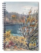 Lake Roosevelt Spiral Notebook