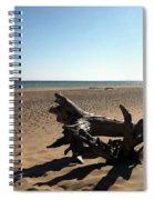 Lake Superior Driftwood Spiral Notebook