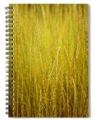 Lake Tahoe Wild Grasses Spiral Notebook