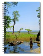 Lake Waccamaw Nc Spiral Notebook