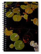 Lake Washington Lilypad 8 Spiral Notebook