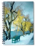 Lakeshore Walkway In Winter Spiral Notebook