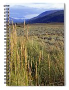 Lamar Valley 2 Spiral Notebook