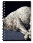 Lamb Of God. Agnus Dei Spiral Notebook