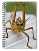Land Lubber Spiral Notebook