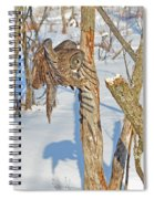 Landing Claws Spiral Notebook
