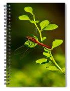 Landing Pad Spiral Notebook