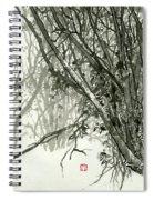 Landscape - 78 Spiral Notebook