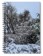 Landscape In The Snow Spiral Notebook