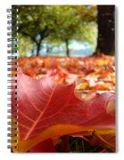 Landscape Trees Park Art Prints Autumn Fall Leaves Baslee Troutman Spiral Notebook