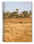 Landscape With Cows Grazing In The Field . 7d9957 Spiral Notebook