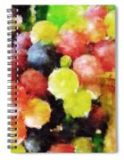 Landscape With Giant Grapes Spiral Notebook