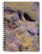 Landslide  Spiral Notebook