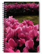 Lane Of Pink Spiral Notebook