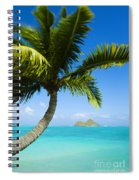 Lanikai Palm Spiral Notebook