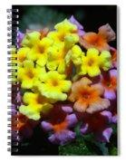 Lantana Flower Chips Spiral Notebook