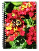Lantanas And The Bee Spiral Notebook