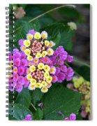 Lantanna's Blooms Spiral Notebook