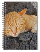 Lanzarote Ginger Spiral Notebook