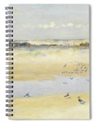 Lapwings By The Sea Spiral Notebook