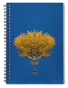 Larch Kaleidoscope 3 Spiral Notebook