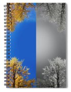 Larches Color To Black And White Reflection Spiral Notebook