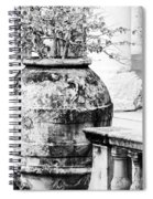Large Flowerpot - Black And White Spiral Notebook