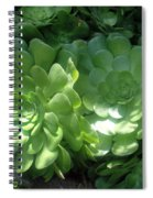 Large Green Succulent Plants Spiral Notebook