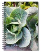 Large Leaves Of A Cabbage Plant Spiral Notebook
