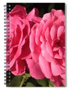 Large Pink Roses Spiral Notebook